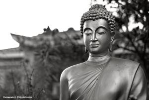 Walking Buddha Lien Hoa copy
